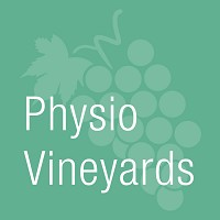 Physiovineyards physiotherapist clinic